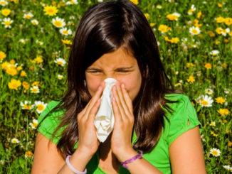 Pollenallergien